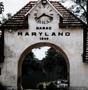 """Criadero Los Condores en """"Haras Maryland"""" y """"X Potro del Futuro, Tandil, Argentina"""