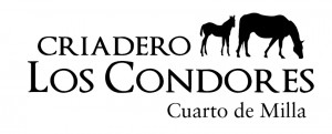 Caballos Cuarto de Milla San Bernardo, Chile 56968376209
