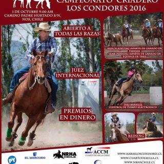 Campeonato Los Cóndores 2016