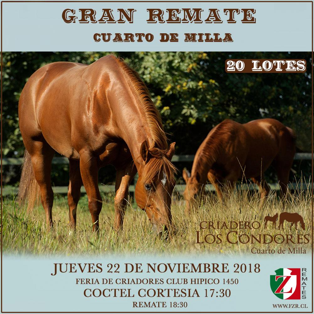 Asociación Chilena de Criadores de Caballos Cuarto de Milla